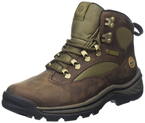 Timberland Chocorua Trail Mid with Gore Tex Membrane 15631, Damen Sportschuhe - Wandern, braun, (brown w/green), EU 39, (US 8), (UK 6)